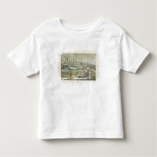 Forcing Garden in Winter, from Fragments on the Th Tee Shirt