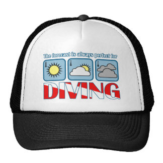 Forecast for Diving Mesh Hats