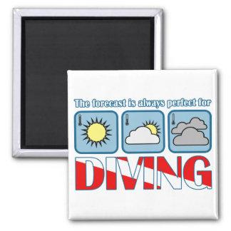 Forecast for Diving Magnet