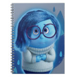 Forecast is for Blue Skies Notebook