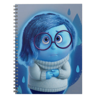 Forecast is for Blue Skies Spiral Notebook