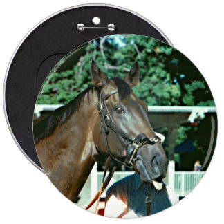 Forego Racehorse 1977 6 Inch Round Button