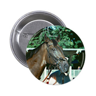Forego Racehorse 1977 2 Inch Round Button