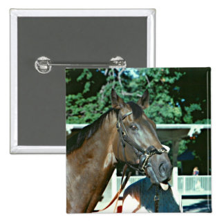 Forego Racehorse 1977 Button