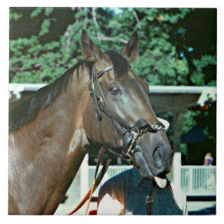 Forego Racehorse 1977 Large Square Tile