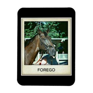 Forego Racehorse 1977 Rectangular Photo Magnet