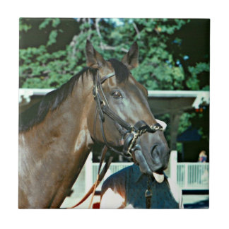 Forego Racehorse 1977 Small Square Tile