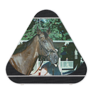 Forego Racehorse 1977 Speaker