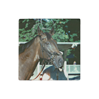 Forego Racehorse 1977 Stone Magnet