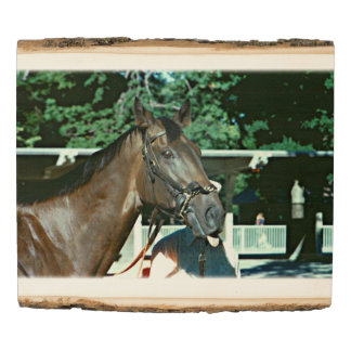 Forego Racehorse 1977 Wood Panel