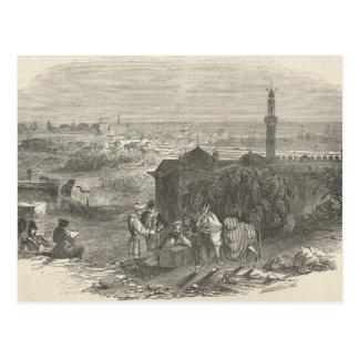 Foreign Corn Ports, Alexandria Postcard