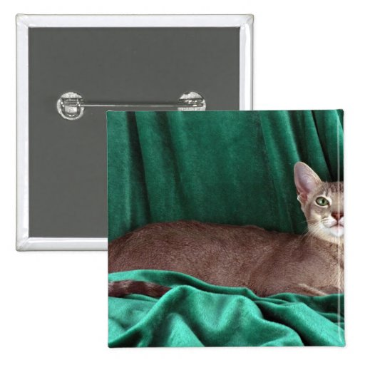 Foreign Oriental, blue ticked tabby 2 Inch Square Button