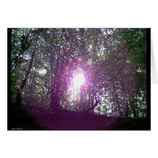 Forenoon in the Forest 2 Greeting Card
