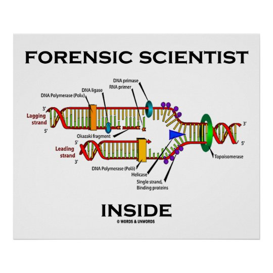 Forensic Scientist Inside (DNA Replication) Poster