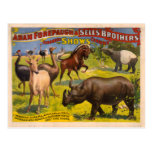 Forepaugh and Sells Wondrous Beasts Circus Poster Postcards