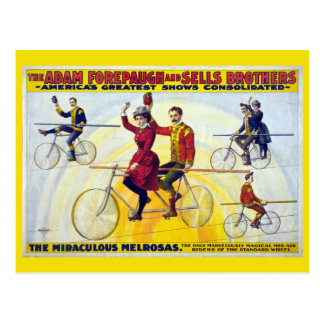 Forepaugh & Sells Brothers Vintage Circus Poster Postcard