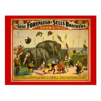 Forepaugh y poster del circo de los elefantes de postales