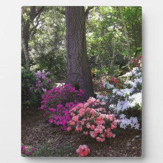 Forest and Flowers 8x10 with easel Plaque