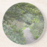 Forest and the foot path beverage coaster