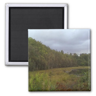 forest and tree 2 inch square magnet