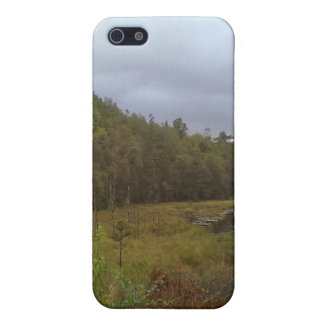forest and tree case for iPhone SE/5/5s