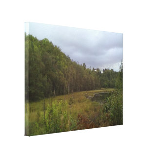 forest and tree gallery wrap canvas