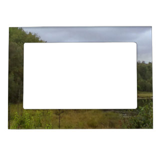 forest and tree magnetic picture frame