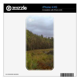 forest and tree skin for iPhone 4