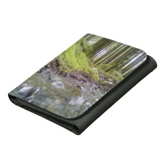 Forest and water wallets