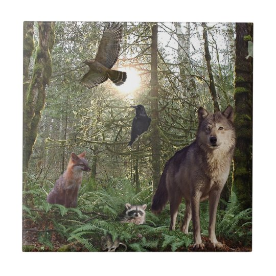 Forest Animals Gift Tile