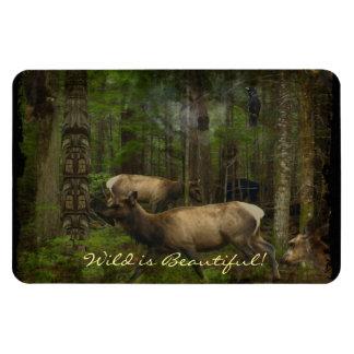 Forest Animals Wildlife-Supporter Wild Art Magnet