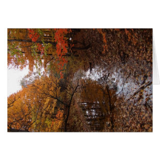Forest At Automn With Water Greeting Card