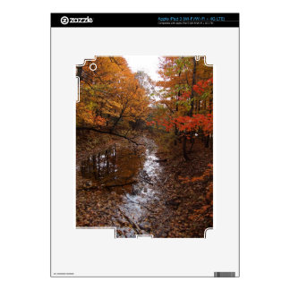 FOREST AT AUTOMN WITH WATER DECALS FOR iPad 3