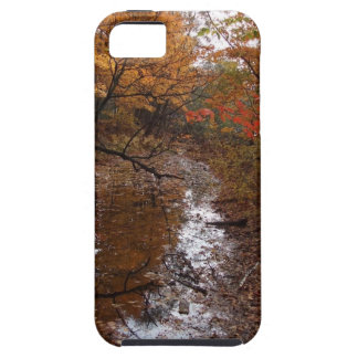 FOREST AT AUTOMN WITH WATER iPhone SE/5/5s CASE
