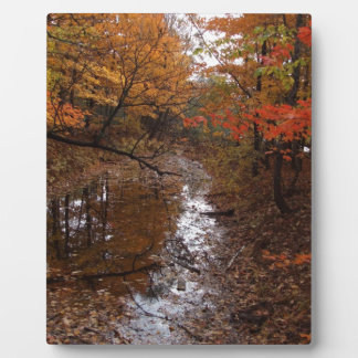 FOREST AT AUTOMN WITH WATER PLAQUE