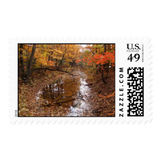 Forest At Automn With Water Postage Stamps