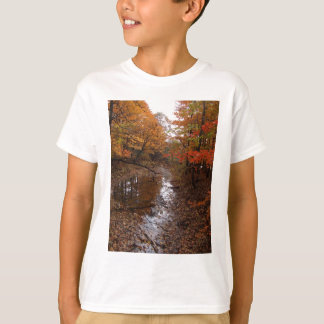 FOREST AT AUTOMN WITH WATER T-Shirt