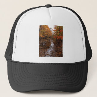FOREST AT AUTOMN WITH WATER TRUCKER HAT