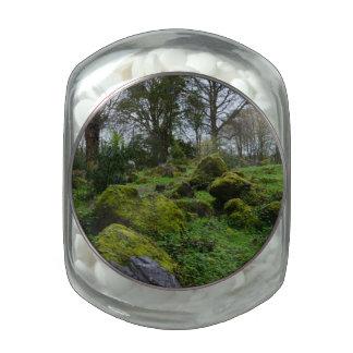 Forest at Blarney Castle Glass Jar