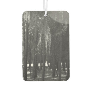 Forest at Sholom Park in Black and White Car Air Freshener