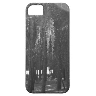 Forest at Sholom Park in Black and White iPhone 5 Cases