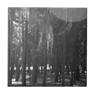 Forest at Sholom Park in Black and White Ceramic Tile