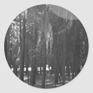 Forest at Sholom Park in Black and White Classic Round Sticker