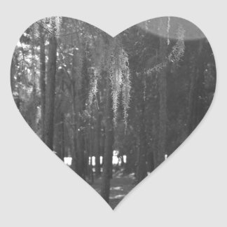 Forest at Sholom Park in Black and White Heart Sticker