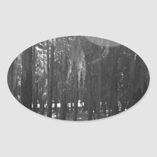 Forest at Sholom Park in Black and White Oval Sticker