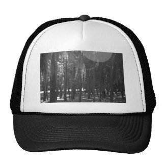 Forest at Sholom Park in Black and White Trucker Hat