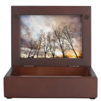 Forest at sunset with cloudy sky memory box