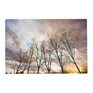Forest at sunset with cloudy sky placemat