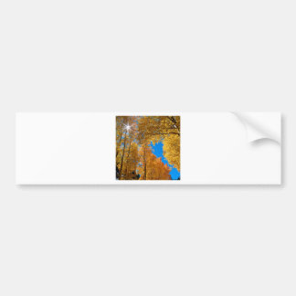 Forest Autumn Colors Inyo Bumper Sticker