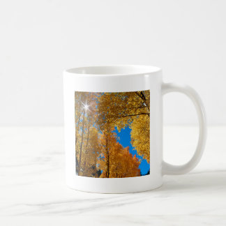 Forest Autumn Colors Inyo Mug